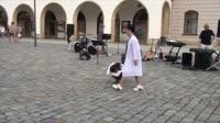 Pantomima - evangelizace Olomouc